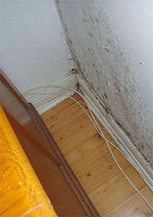 Huoneiston sisäilmassa on niin paljon ylimääräistä kosteutta, että se tiivistyy kylmempiin pintoihin, esimerkiksi ikkunoiden sisäpintaan ja ulkoseinän alaosiin. Kuva: Hengitysliitto